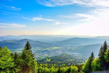 Relaxen im Bayerischen Wald