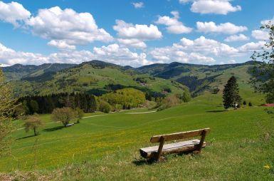 Schwarzwald. Schlemmen. Genießen
