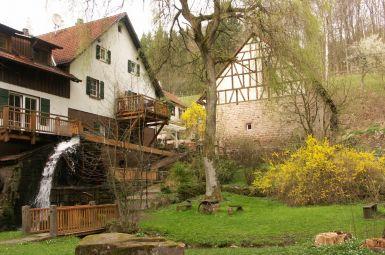 Wandern & Wohlfühlen im Odenwald