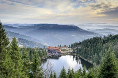 Urlaub im Apartment im Schwarzwald